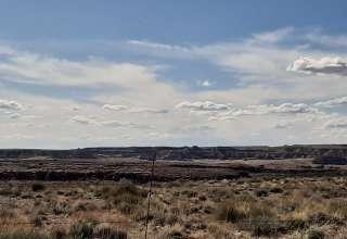 Kimberly T.'s Land