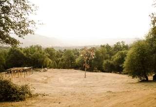 DRARS.org CedarZen Downer Ranch