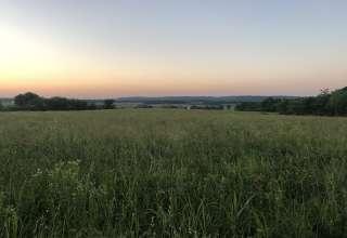 Darrell  J.'s Land