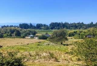 Ballydídean Farm Sanctuary