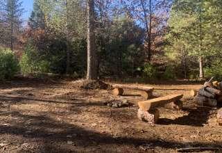 Rockingbird Meadow