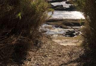 Hidalgo Falls Hideaway