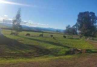 S&R ranch