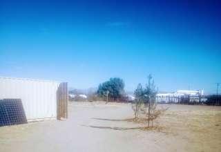 Maureen D.'s Land