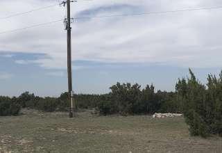 Michelle K.'s Land