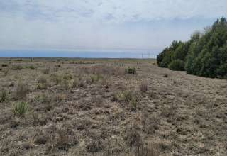 Kalen M.'s Land