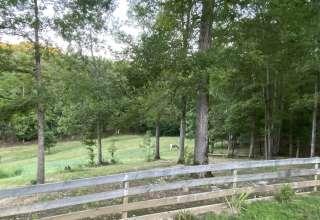 Gus' Farm at Muscadine
