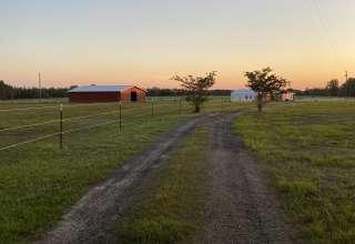 Donna H.'s Land
