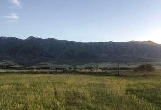 Alana W.'s Land