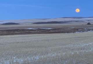 Jessica R.'s Land