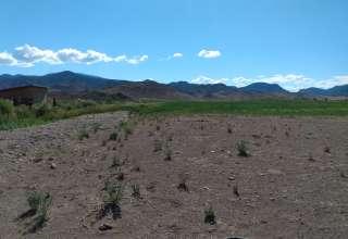 Ryan A.'s Land