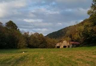 Amy P.'s Land
