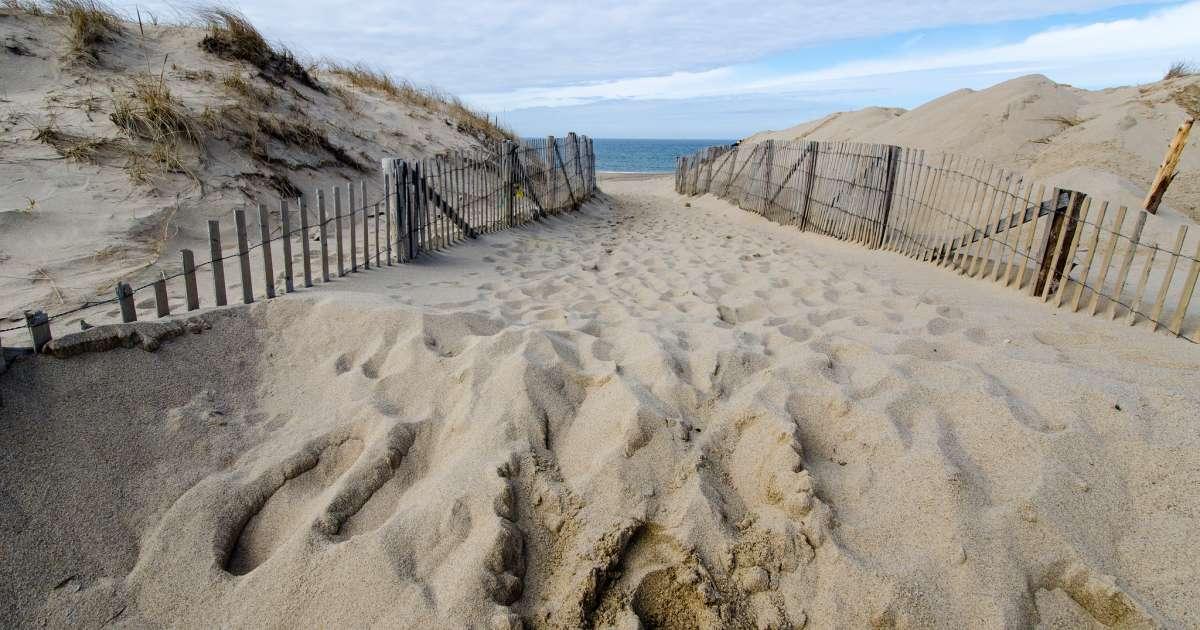 Best Camping in and Near Cape Cod National Seashore