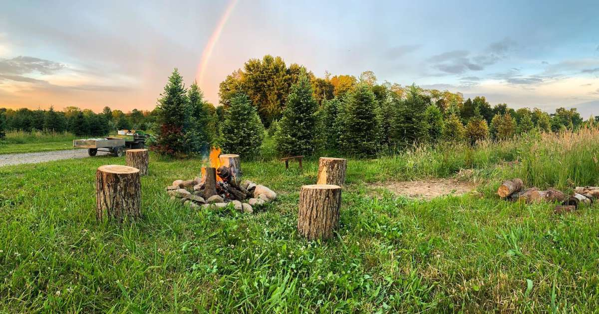 Pioneer Trails Tree Farm Camping