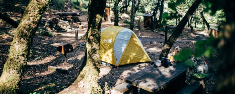 Best Camping In And Near Mount Tamalpais State Park