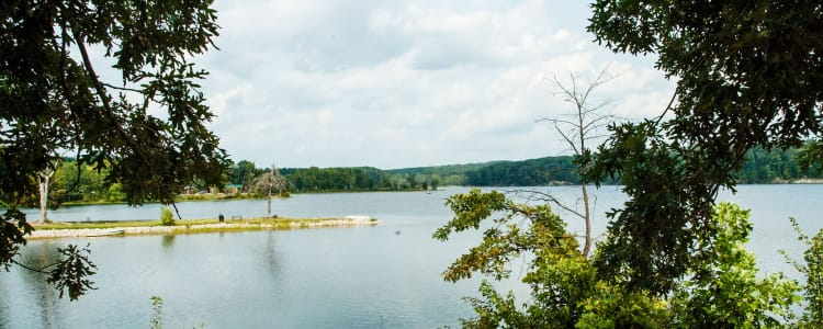 Best Camping In And Near Deam Lake State Recreation Area