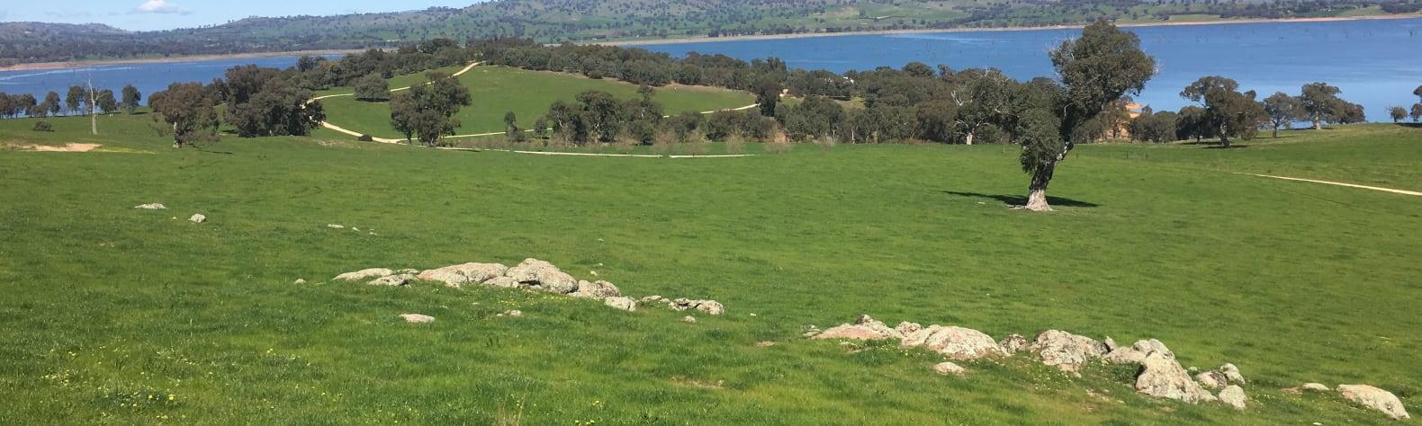 Scrubby Hill
