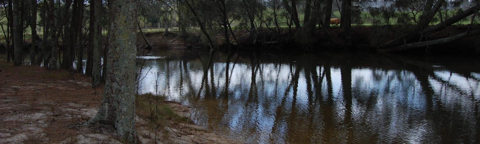 Tomakin River Camping