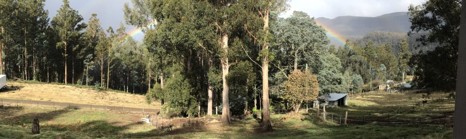 Shires of Myrtle Forest