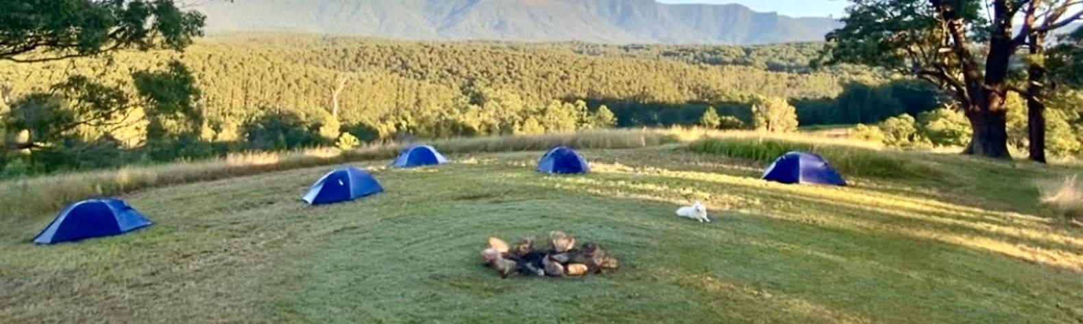 Bulimah Sky Camp, Wollumbin Caldera (Mt Warning)