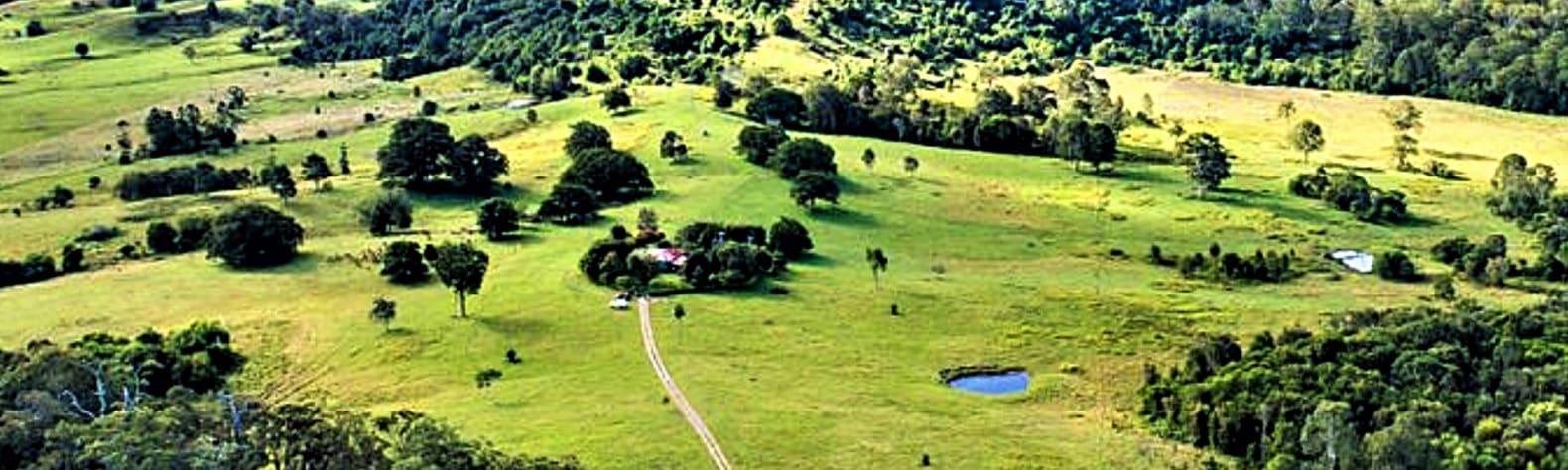 Coondoo Springs