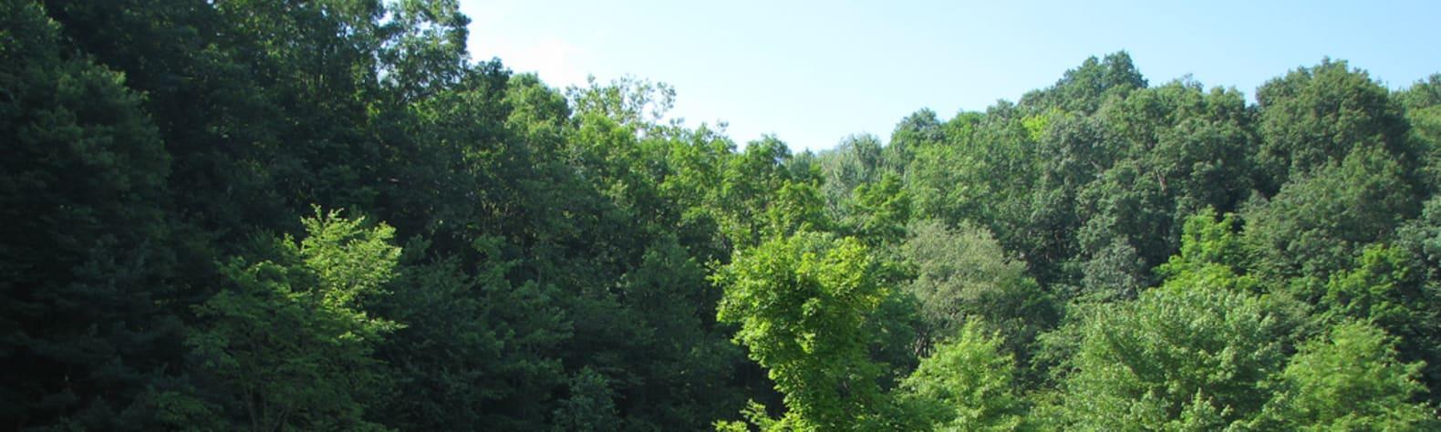 Raccoon Creek State Park