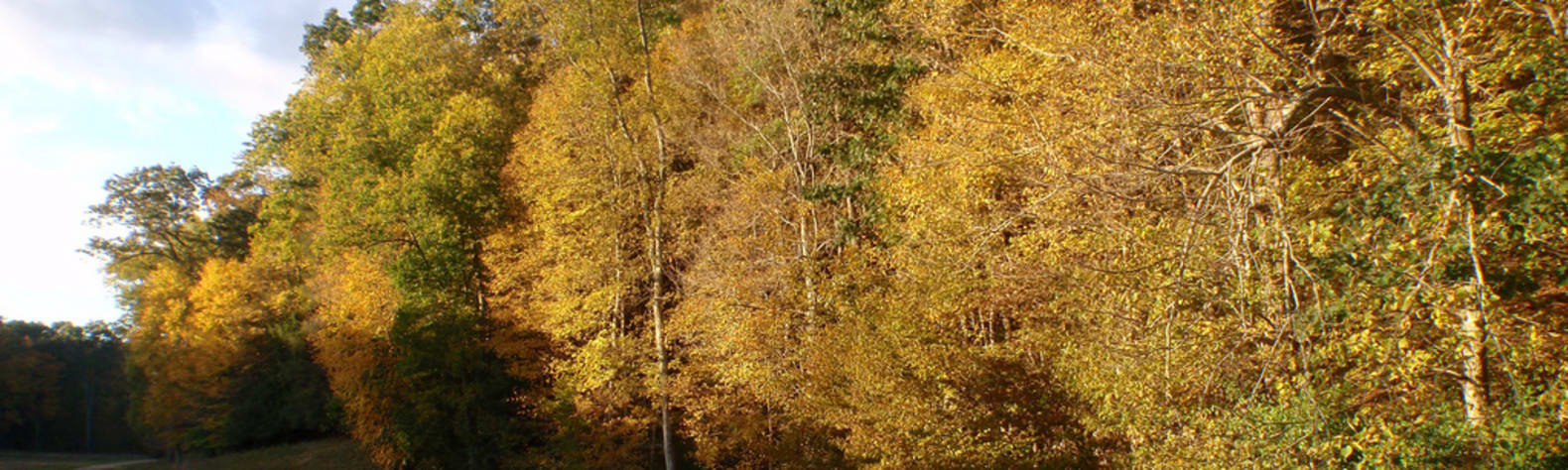 Hurd State Park