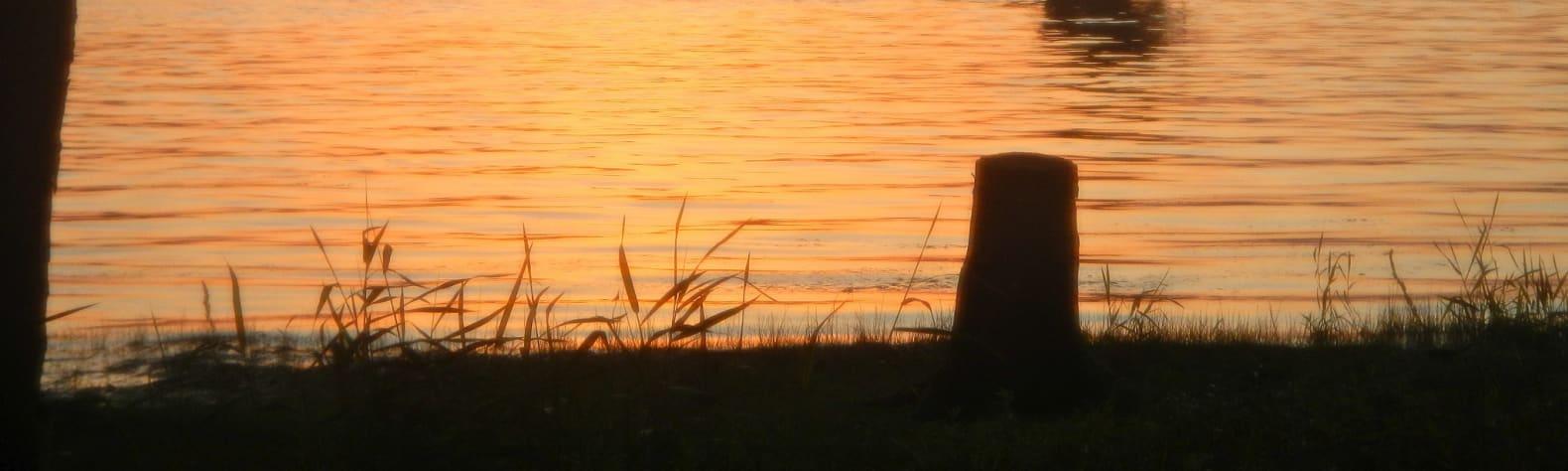 Goose Island Park