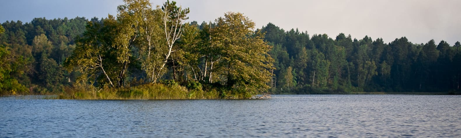 Two Inlets State Forest