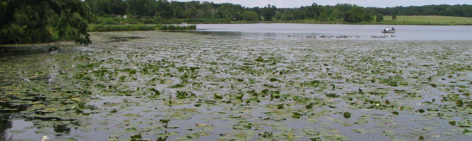 Shabbona Lake State Recreation Area