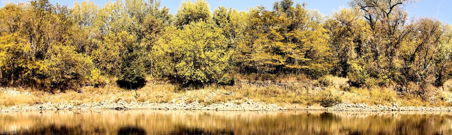 Walnut Woods State Park