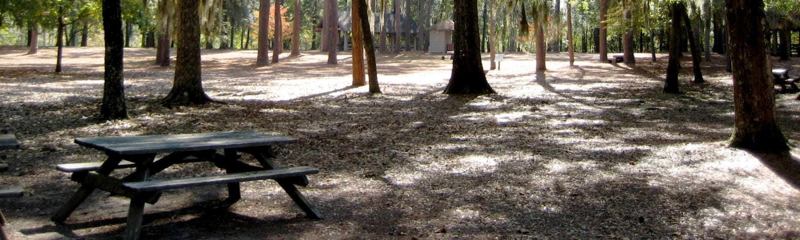 Lee State Park