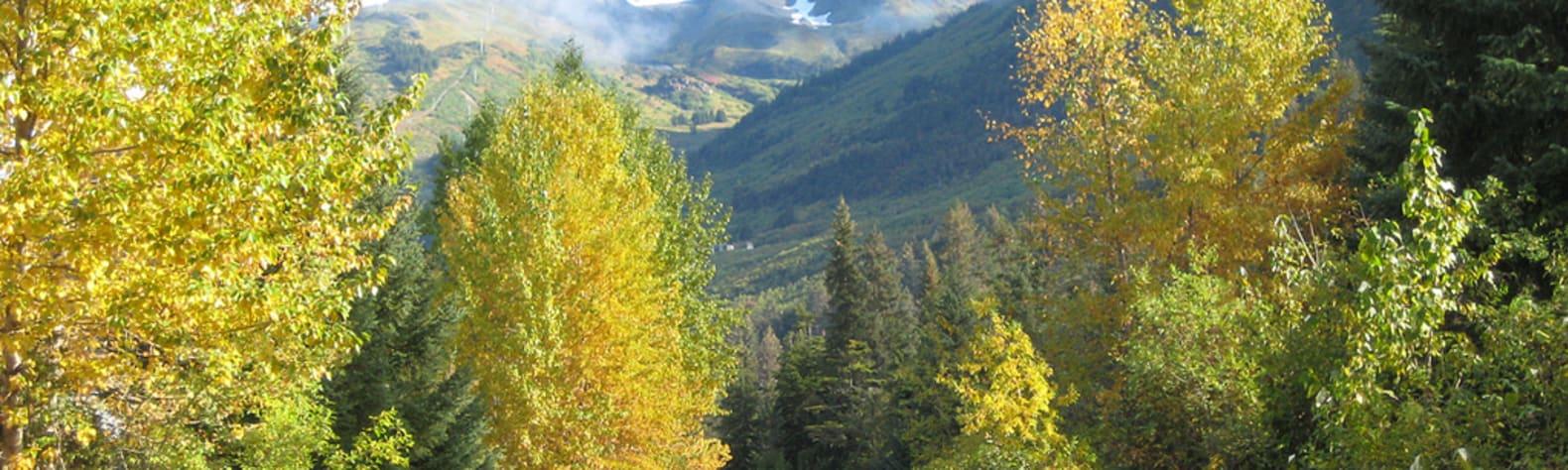 Chugach National Forest