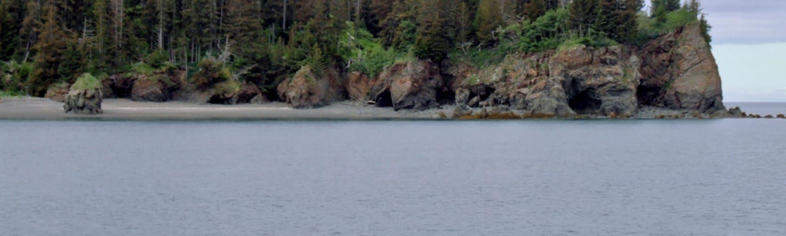 Kachemak Bay State Park and State Wilderness Park