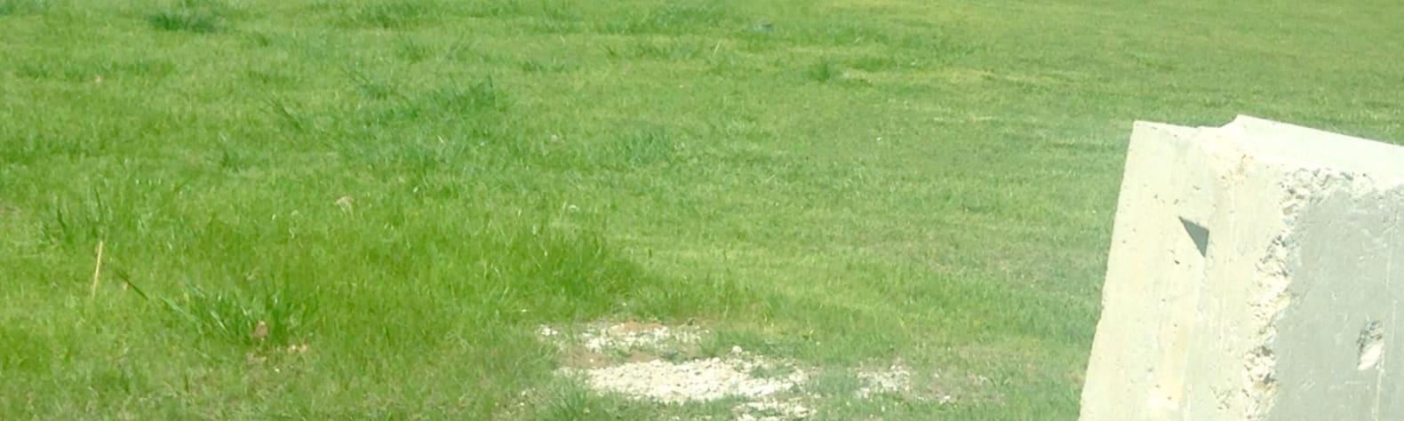 Caddo/LBJ National Grasslands