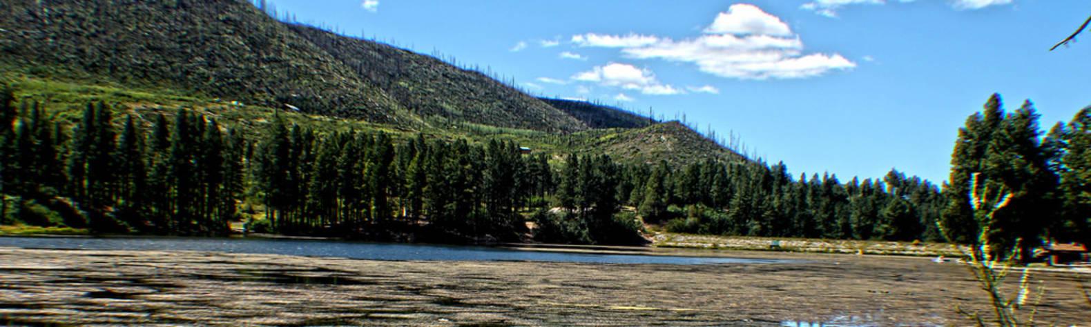 Fenton Lake State Park