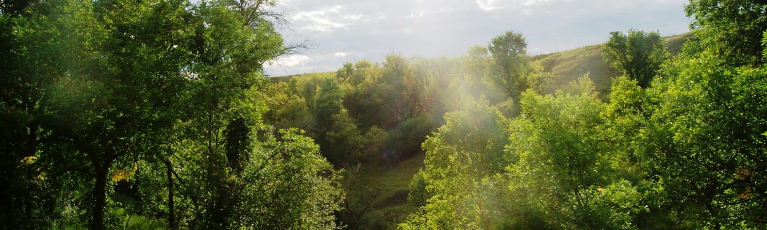 Pierson Ranch Recreation Area