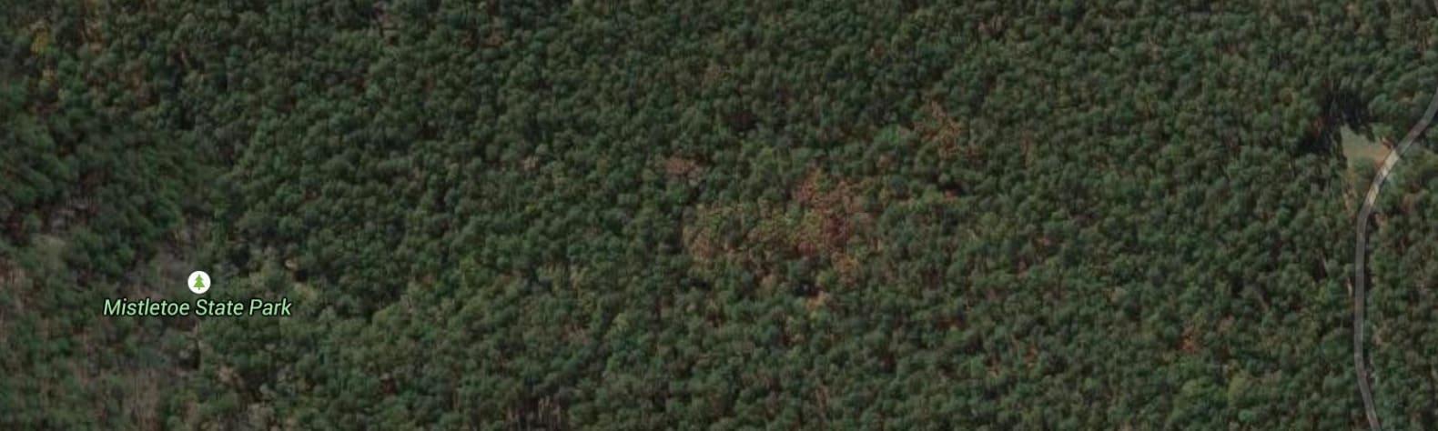 Mistletoe State Park