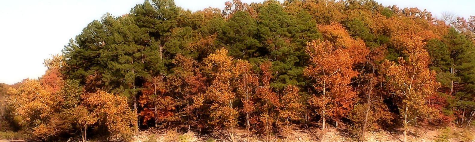 Honey Creek State Park OK
