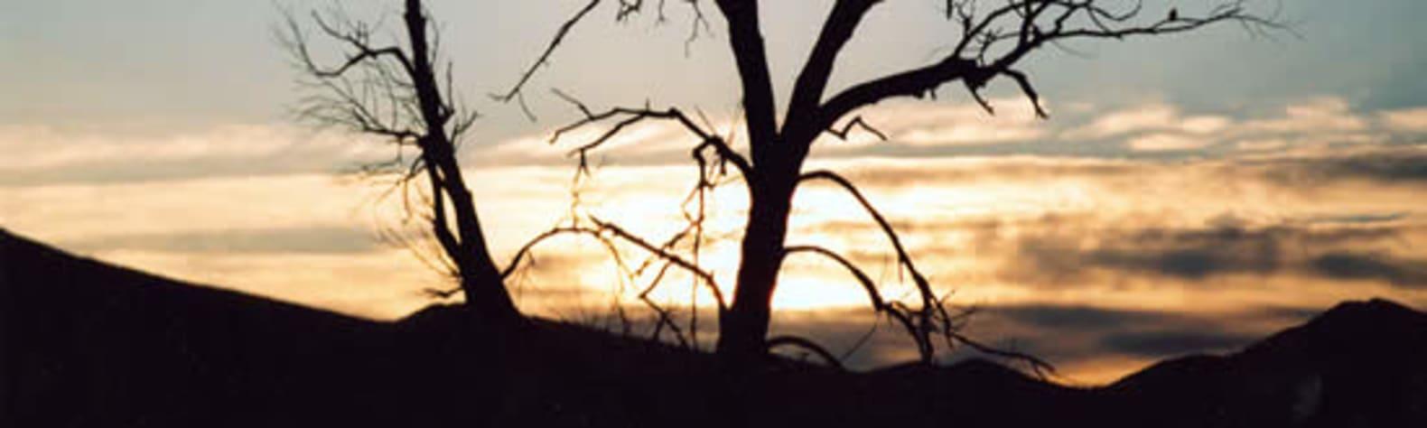 Curlew National Grassland