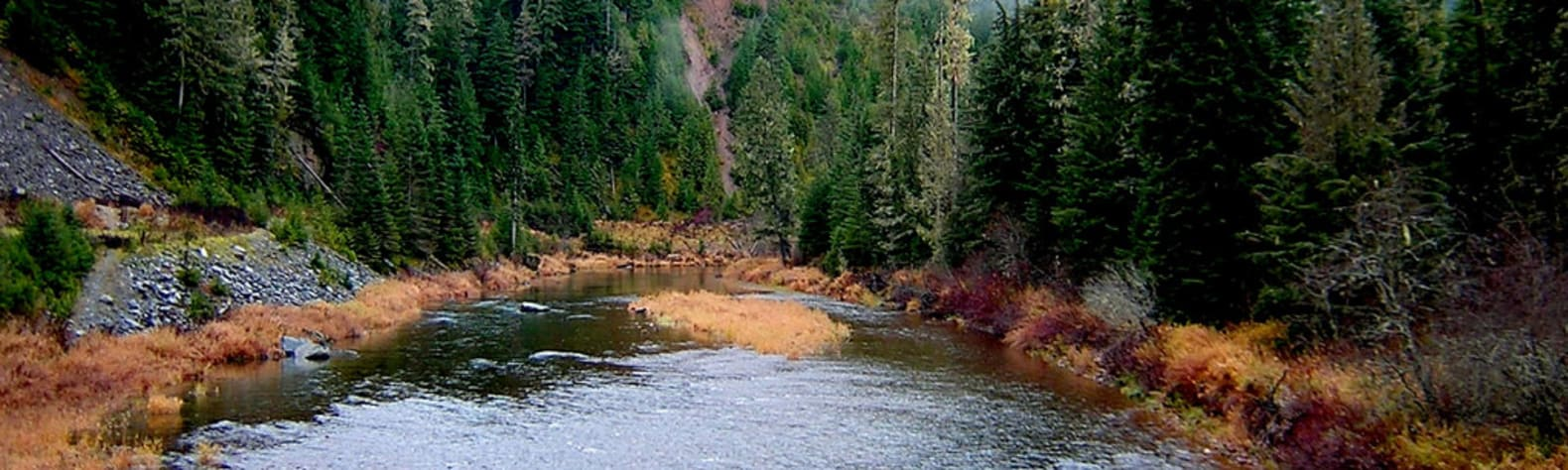Coeur d'Alene River Campground and Picnic Areas