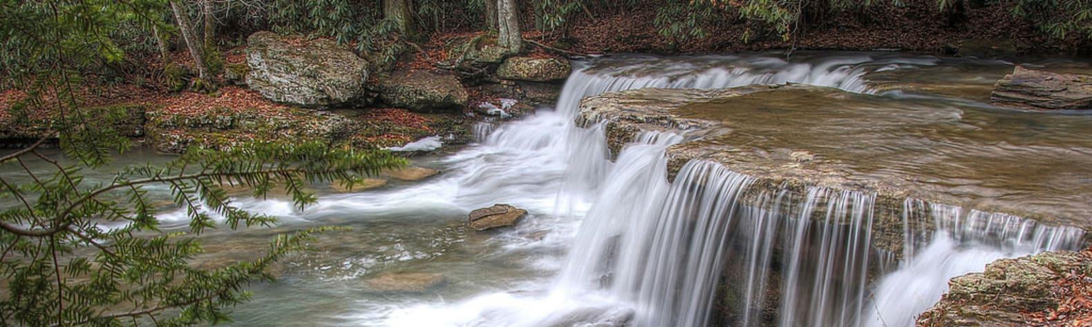 Cabwaylingo State Forest