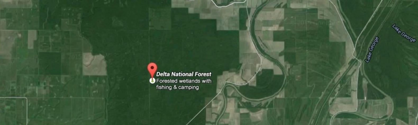 Delta National Forest