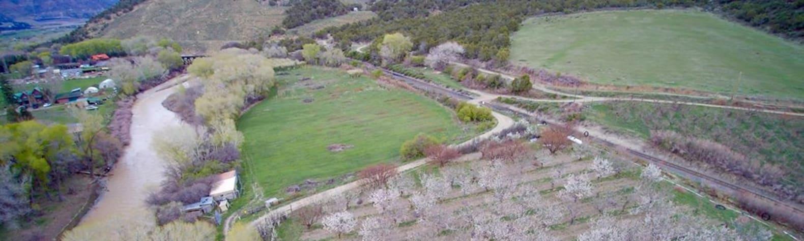 Muskitty Acres Farm