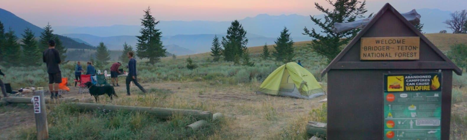 Teton National Forest