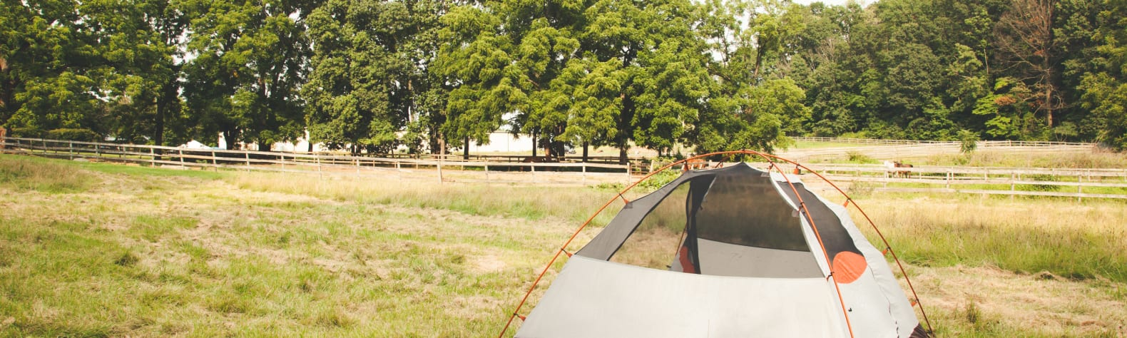 Stone Field Stables and Camping