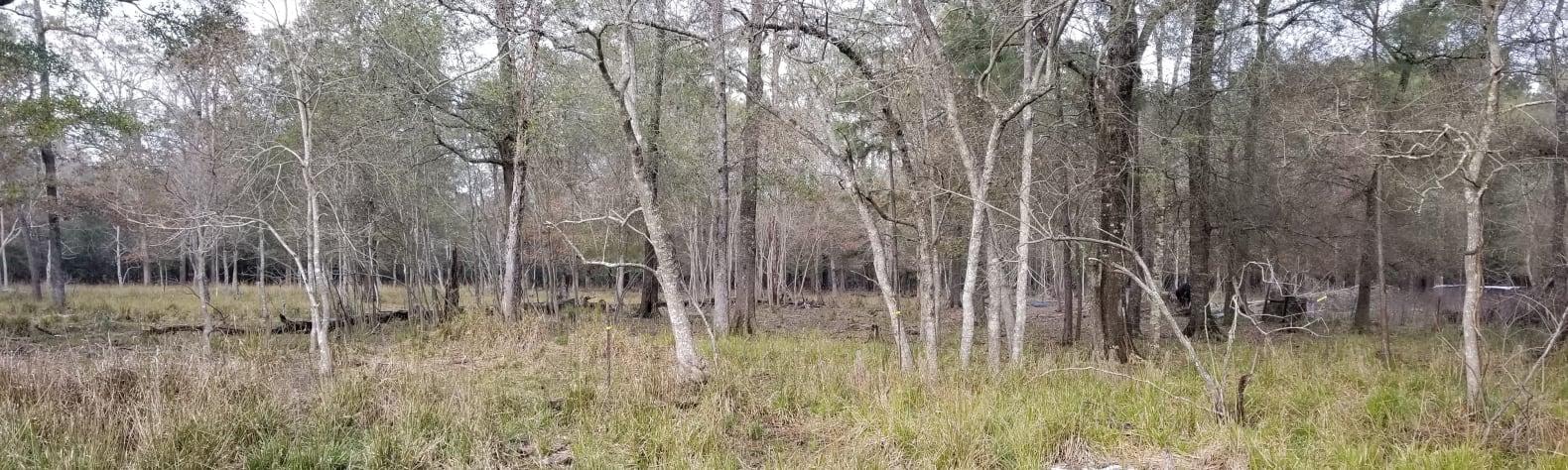 The Happy Campinn Ranch
