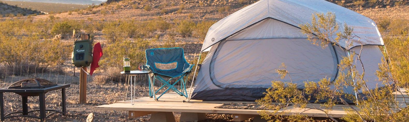 Desert Daisy- camp under stars