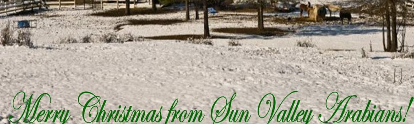 Sun Valley Horse & Hiking Camp!