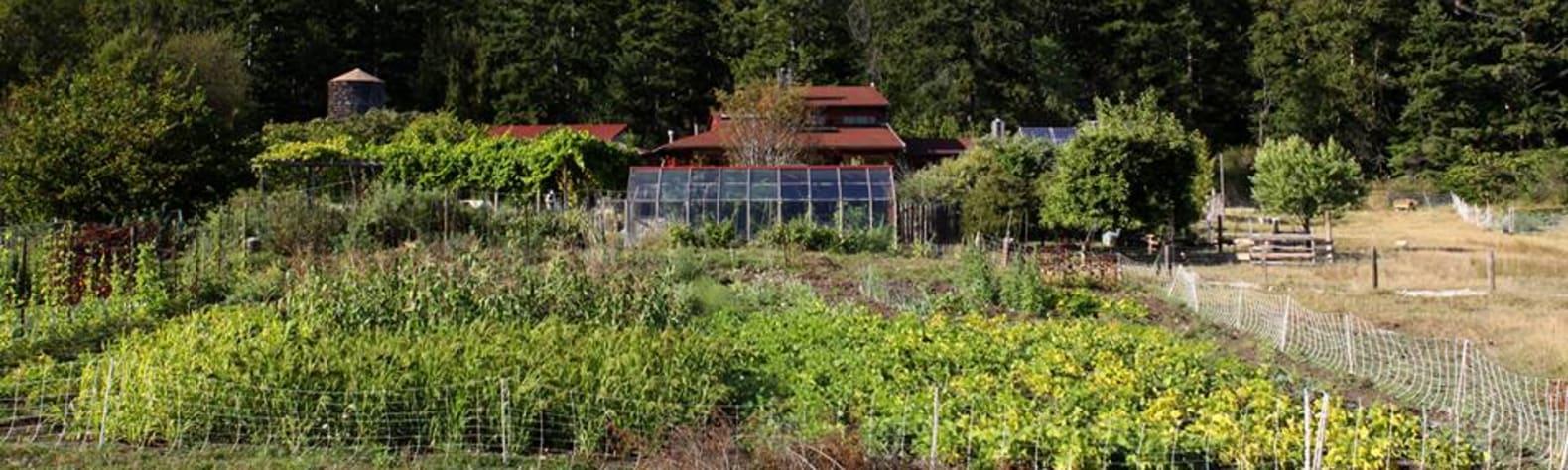 Gaia Rising Farm